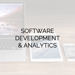 Software Development & Analytic Services